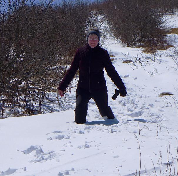 Snow on Jane Bald
