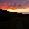 Sunset on Roan Mountain