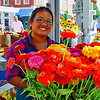 Colorful flowers for sale