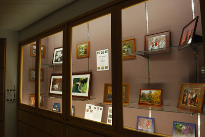 The Beauty of Nature, Photography Exhibit, Waltham