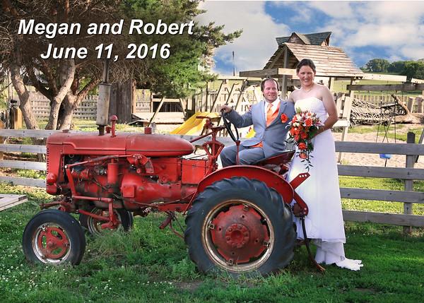 Robert and Megan wedding