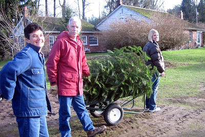 Taking the tree back to the truck