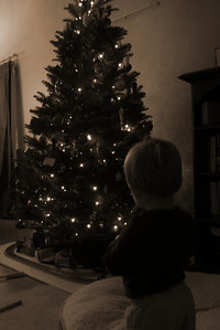 zach lighting up the tree with the remote control switch