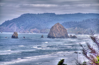 we saw haystack rock from a pull-off along 101.   it's pretty for sure. wish we had more time to stop. maybe next time.
