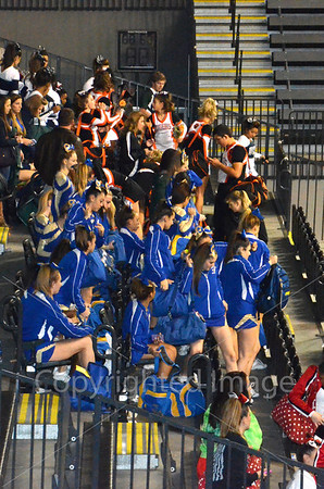 State Cheer Nov 9  2013