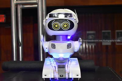 Deepak RobotNature 030720 A TracySaundersArt (93)