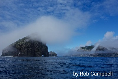 Cape Brett and Hole in the Rock