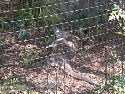 1999-05-01 Zoo