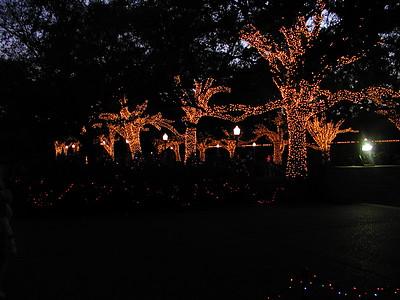 2004-12\12-20 Zoo