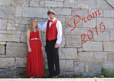 Robyn Prom 2015