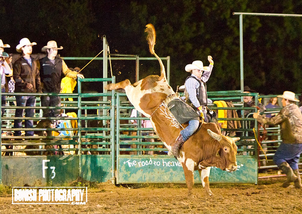 Rock Bottom Bull Riding