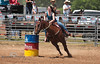 Rock Bottom Barrel Racing - Photo by Pat Bonish (2)