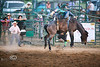 You gotta feel sorry for the poor cowboy who drew Bronc 90 - Rock Bottom Bronc Riding - Photo by Cindy Bonish