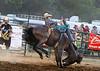 90 Isnt the Bronc you want to Draw - Rock Bottom Saddle Broncs - Photo by Pat Bonish