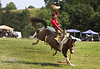Rock Bottom Pasture Bronc Riding - Friday - Photo by Pat Bonish (8)