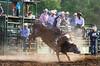 Kickin' Up a Cloud of Dust - Rock Bottom Bull Riding - Photo by Pat Bonish