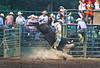 Kicking Dust - Rock Bottom Bull Riding - Photo by Pat Bonish