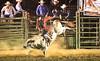 Rock Bottom bull Riding - Photo by Cindy Bonish (1)