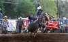 How do you go from Perfection to this so quickly - Rock Bottom Bull Riding - Photo by Pat Bonish (1)