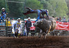 How do you go from Perfection to this so quickly - Rock Bottom Bull Riding - Photo by Pat Bonish (2)