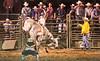 Rock Bottom bull Riding - Photo by Cindy Bonish (4)