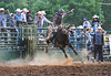 All Four in the Air - Rock Bottom Bull Riding - Photo by Pat Bonish