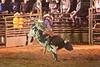 Rock Bottom bull Riding - Photo by Cindy Bonish (5)