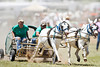 Sue's Pawn Popping Blood Vessels - Rock Bottom Chuck Wagon Races - Photo by Pat Bonish
