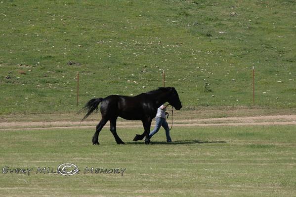 Rock Bottom Chuck Wagon Races - Friday - 2009 - Arkansas