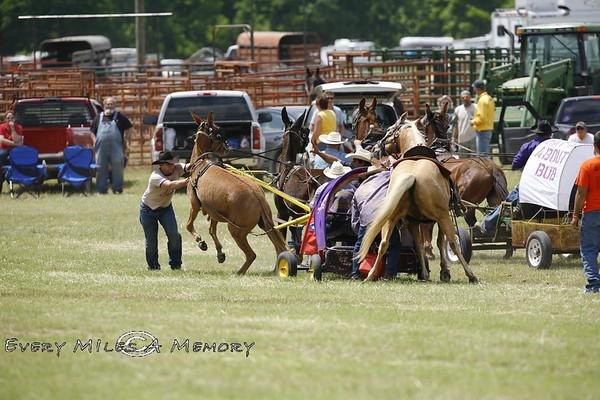 Rock Bottom Chuck Wagon Races - ACWRA Race Day 1 - Saturday - 2009 - Arkansas