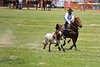 Brad Stacey Working the Cattle in the Rock Bottom Pasture Roping Event - Photo by Pat Bonish