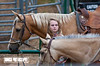 Abby Fowler getting the horses ready for Rock Bottom - Photo by Cindy Bonish
