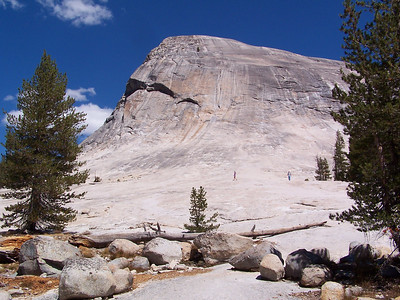 Lembert Dome, 4 miles round trip to the top.