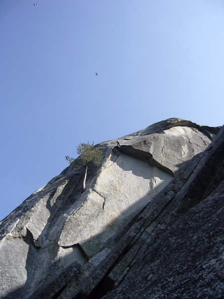 Tony chalking up before pulling the roof on Flower of High Rank 5.9 Suicide Rock.