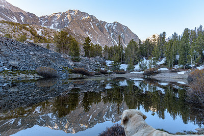 Clear sky dawn in the Sierra