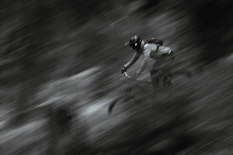 Rider: Matthias Stonig
