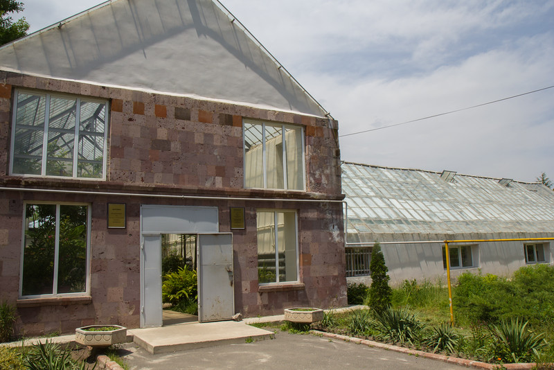 Tropical and subtropical plants. Glass Houses