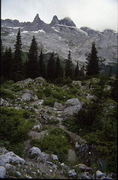 Botanic Garden near the Lindauer hutte OAV 1744m. (Ratikon, Montafon, Gauertal, July 18th 1991)
