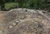 50 cm Calcareous soil, dry habitat of the summit