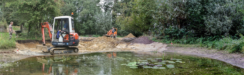 Excavation for a amphibians and reptiles shelter
