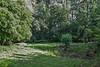 Amphibians pool