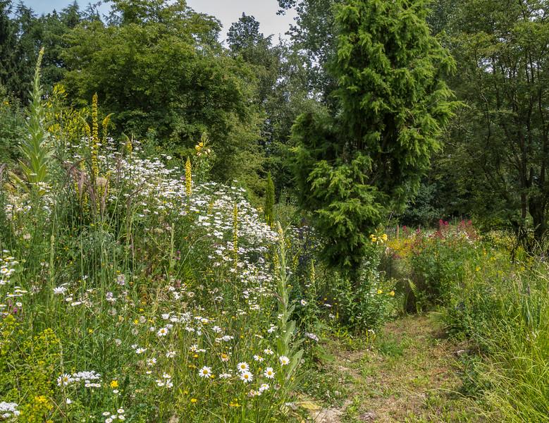 The natural garden of Hans Michielsen