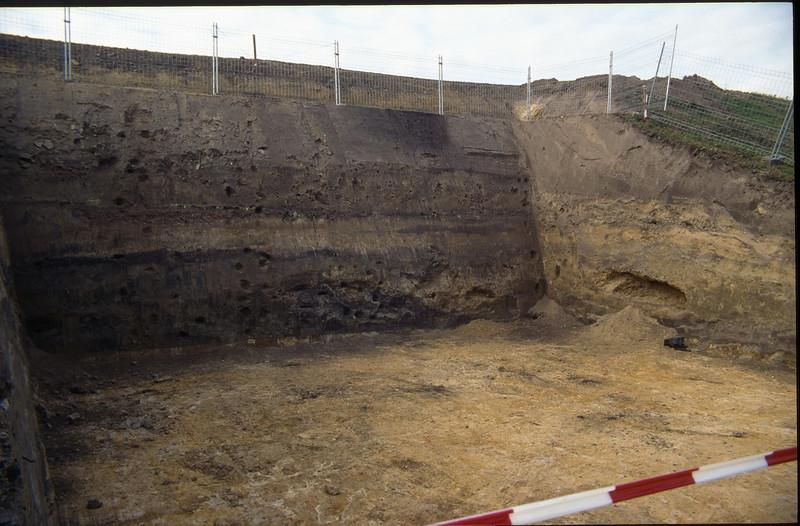 gap in the sound barrier (bat cellar)