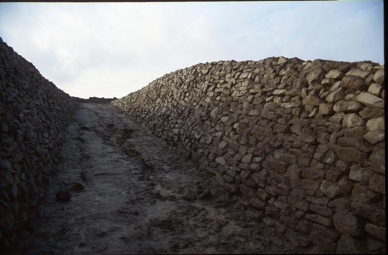 stone taluds (dryness habitat loving plants)