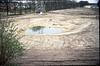 amphibian pool