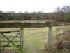 Entrance Eco-park, large pond, February 2011