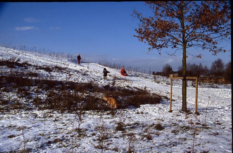 to sledge on the taluds (Winter 1999-2000)