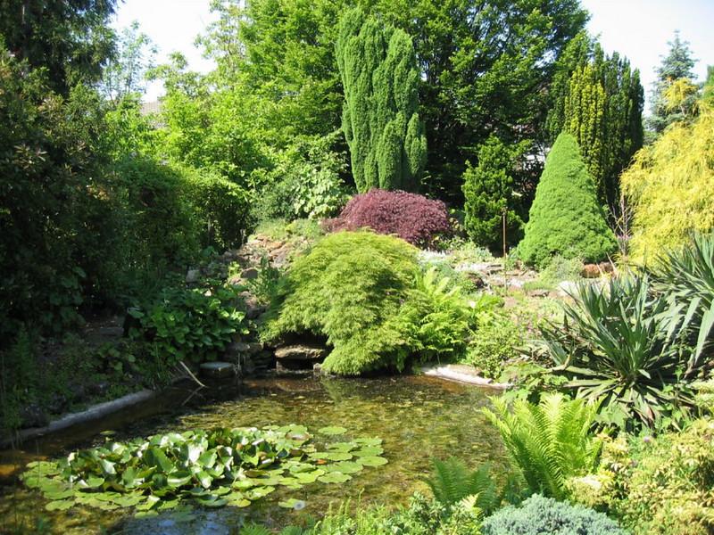 overview pond and garden (Garden Theo v.d. Zanden, Eindhoven)