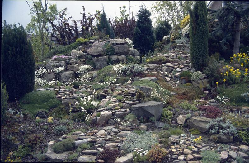 back rock garden Jan Lubbers