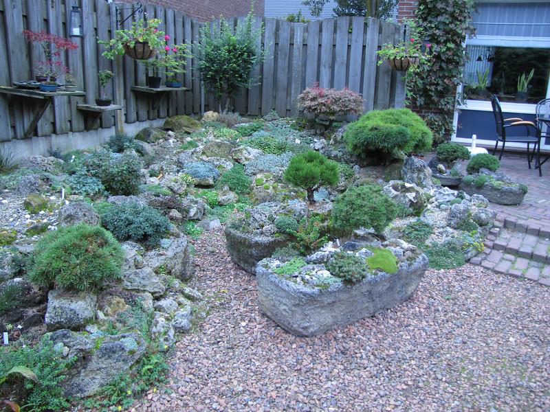 Bonsay trees, terrace, troughs and backyard rock-garden of Ger & Mariet van den Beuken, (Horst, Limburg)